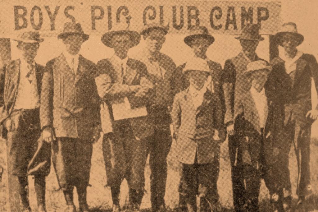 pig club